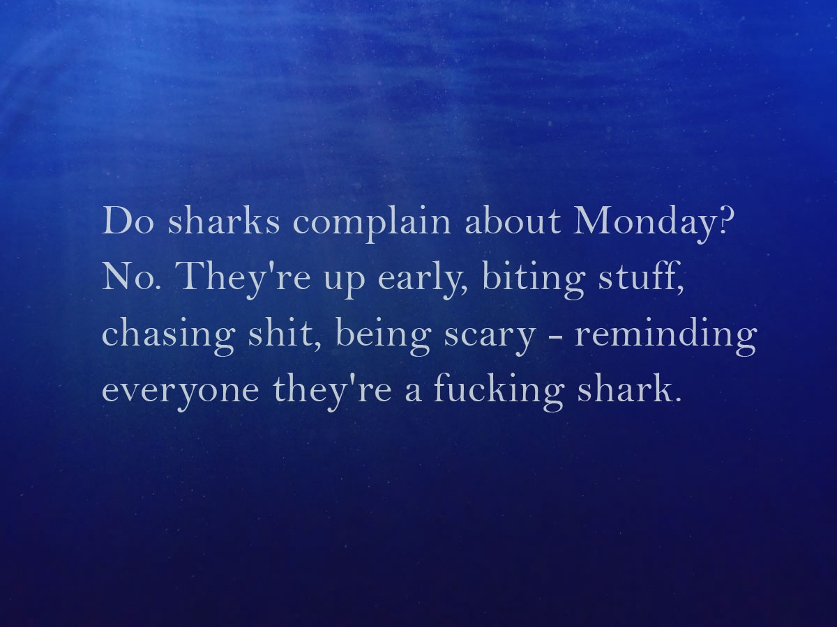 Sharks Don't Complain Saying