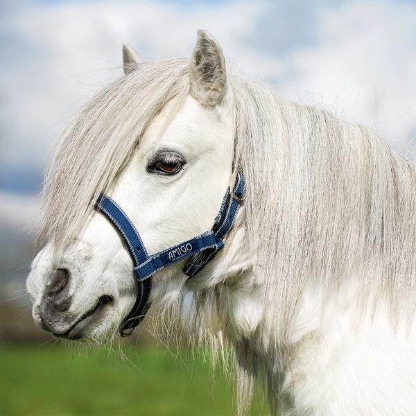 Horseware Amigo Petite Halter