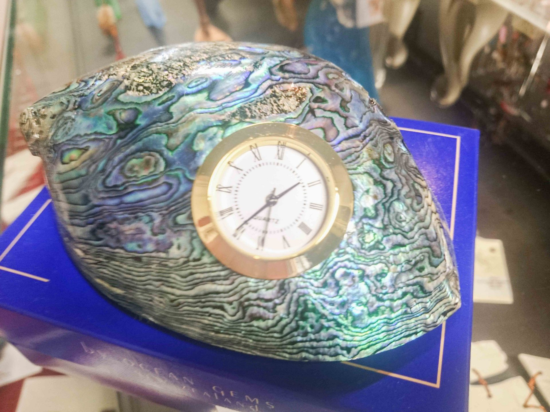 medium polished paua clock shell