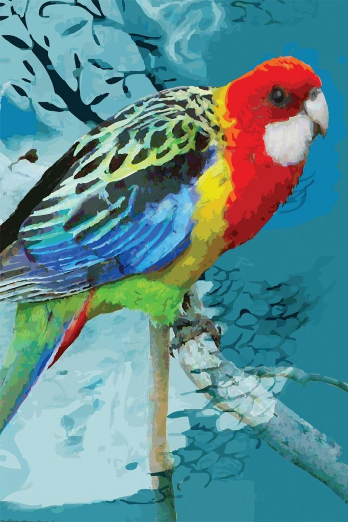 Tea Towel - Rosella