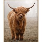 Bovine cow image canvas