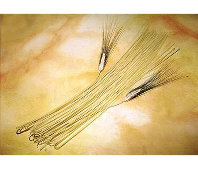 Venturino Spaghetti 500G