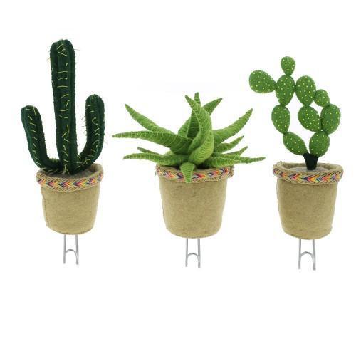 Cactus Hooks