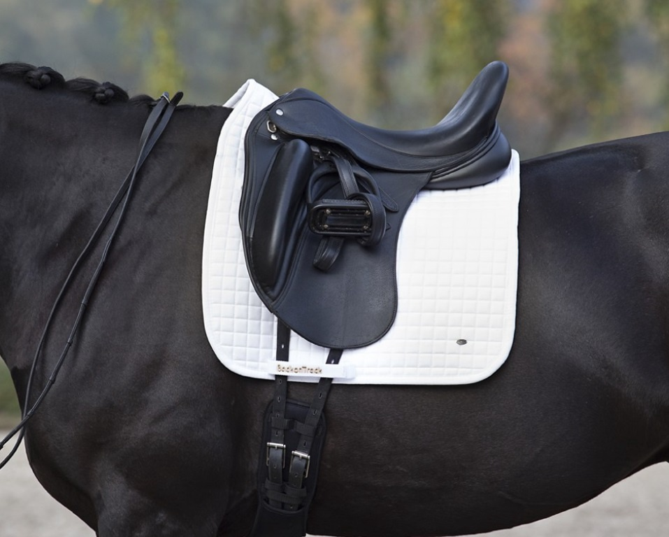 Back on Track No. 1 Dressage Saddle Pad