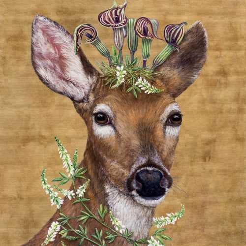 Woodland Princess 25