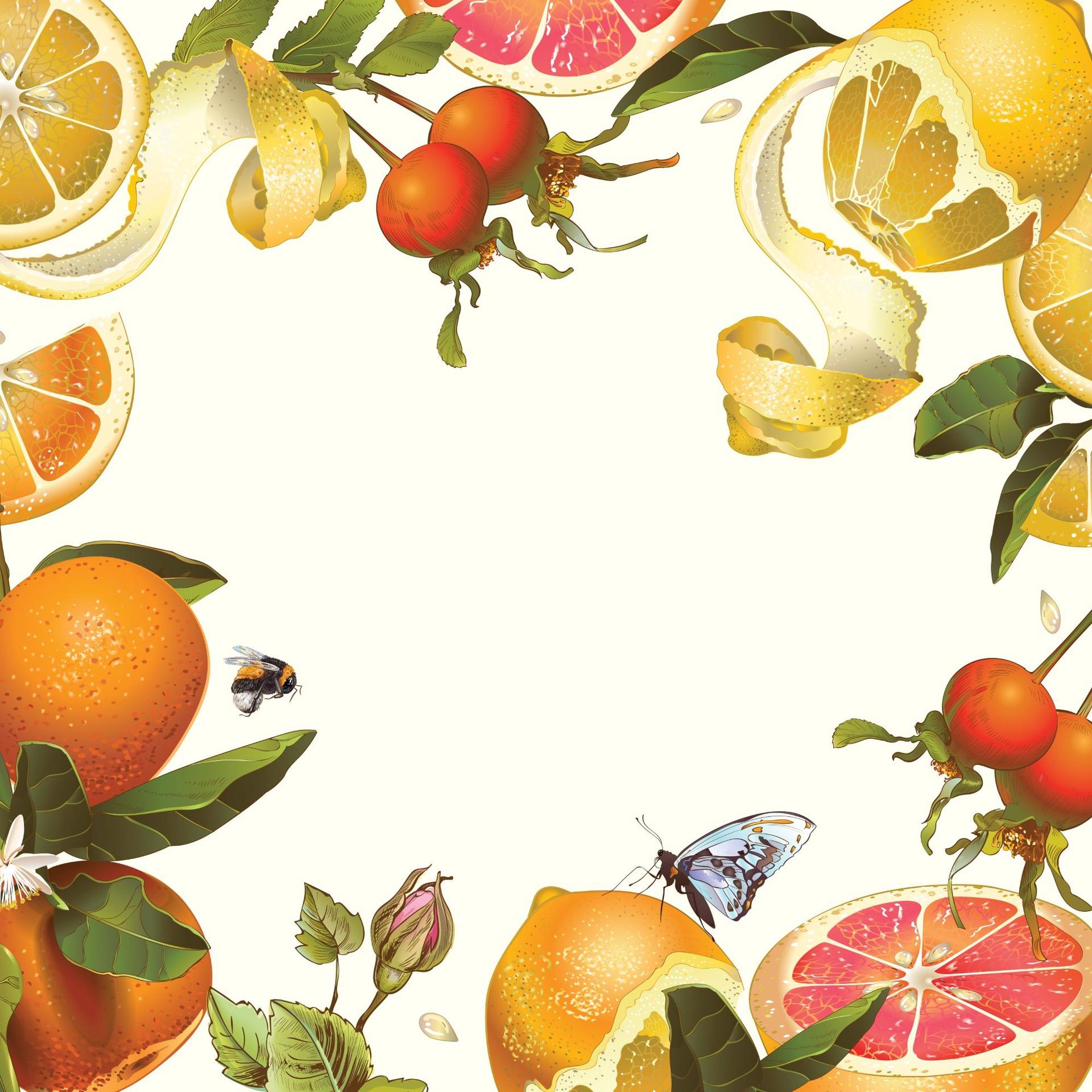 Paper Placemats - Citrus Burst - Gloss Square 30pk