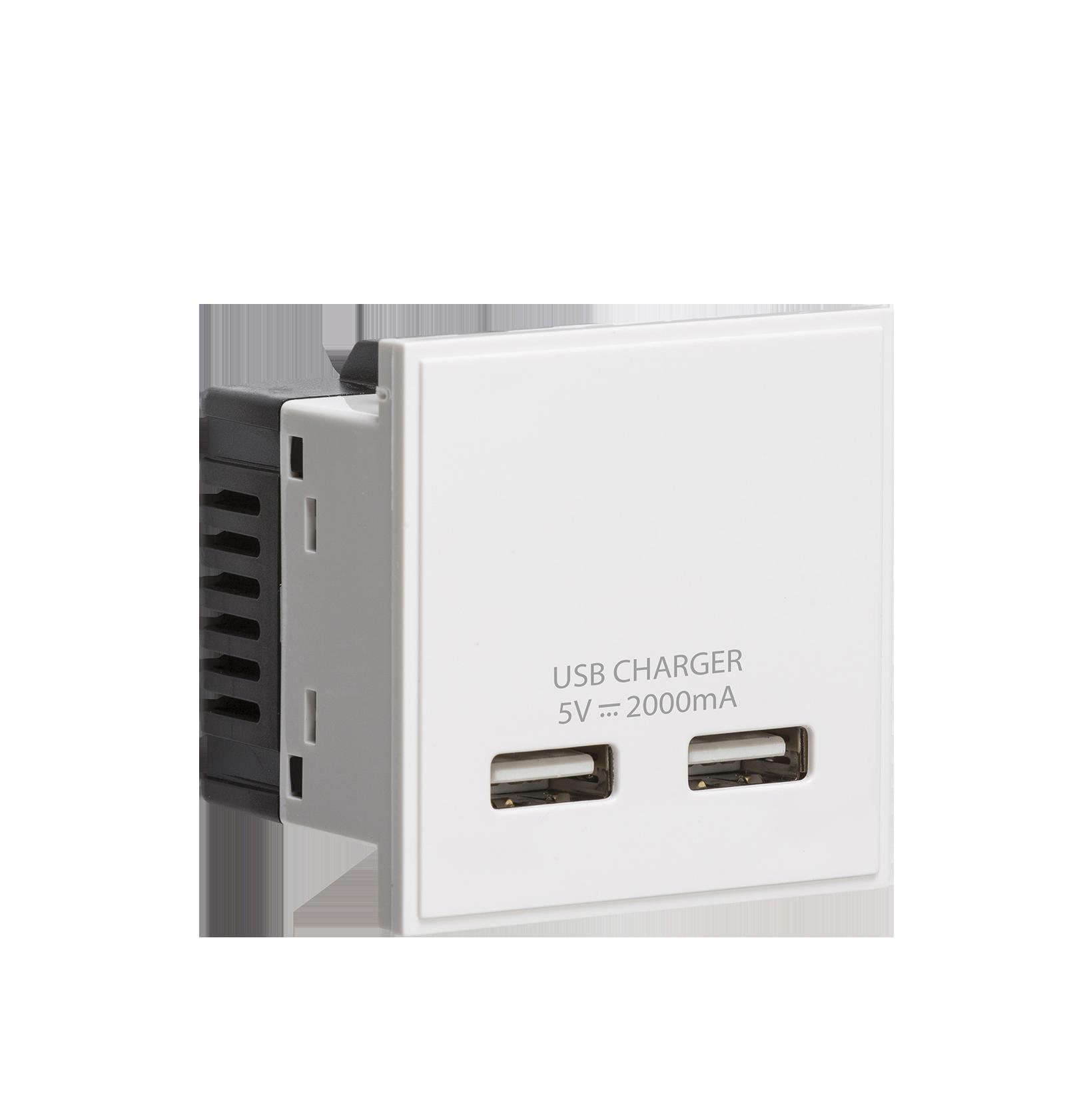 White Modular Dual USB Charger Module 5V DC 2A
