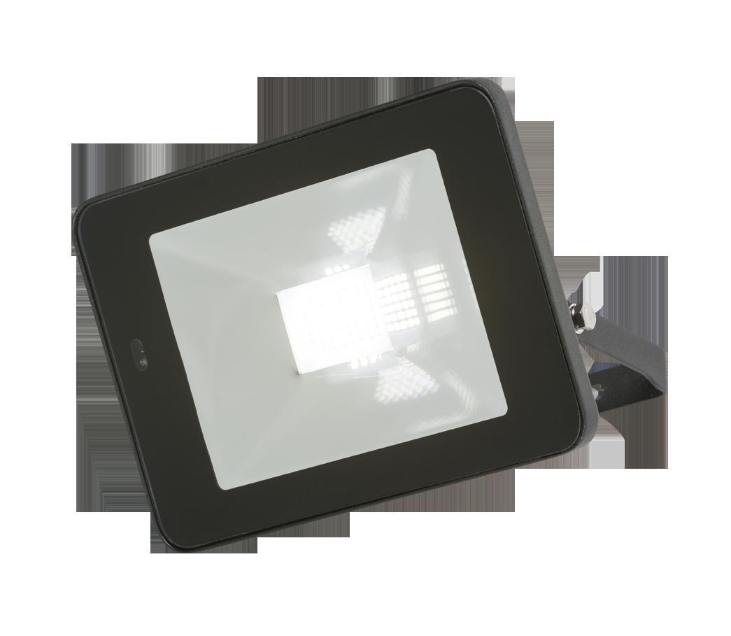 230V IP65 30W LED Black Die-Cast Aluminium Floodlight with Microwave Sensor