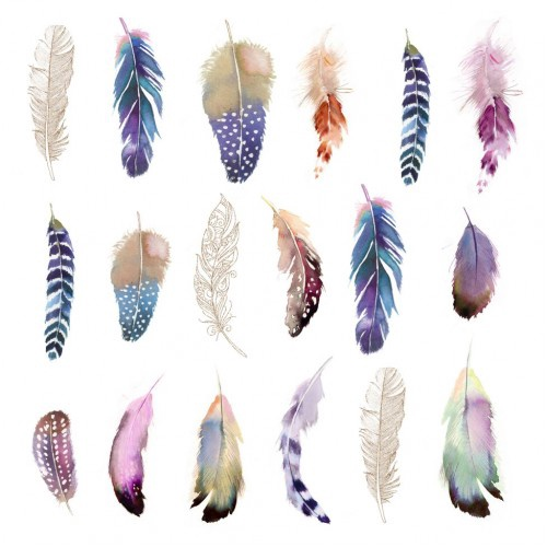 Feathers Fantasy
