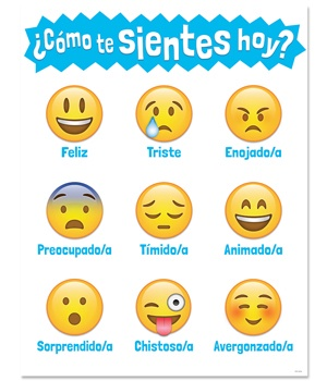 CTP 5392 SPANISH HOW ARE YOU FEELING? CHART