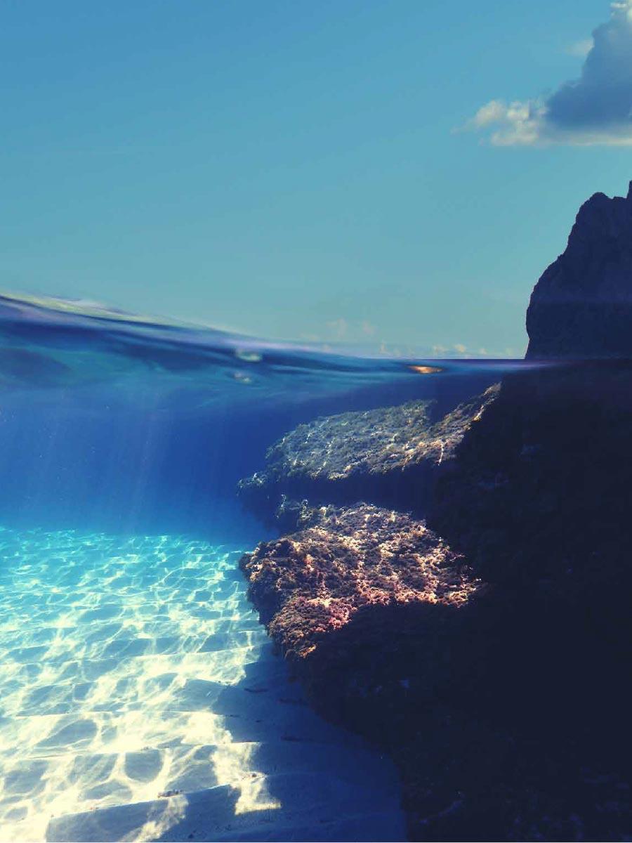 Sea Bottom of Cala Sant Vicent