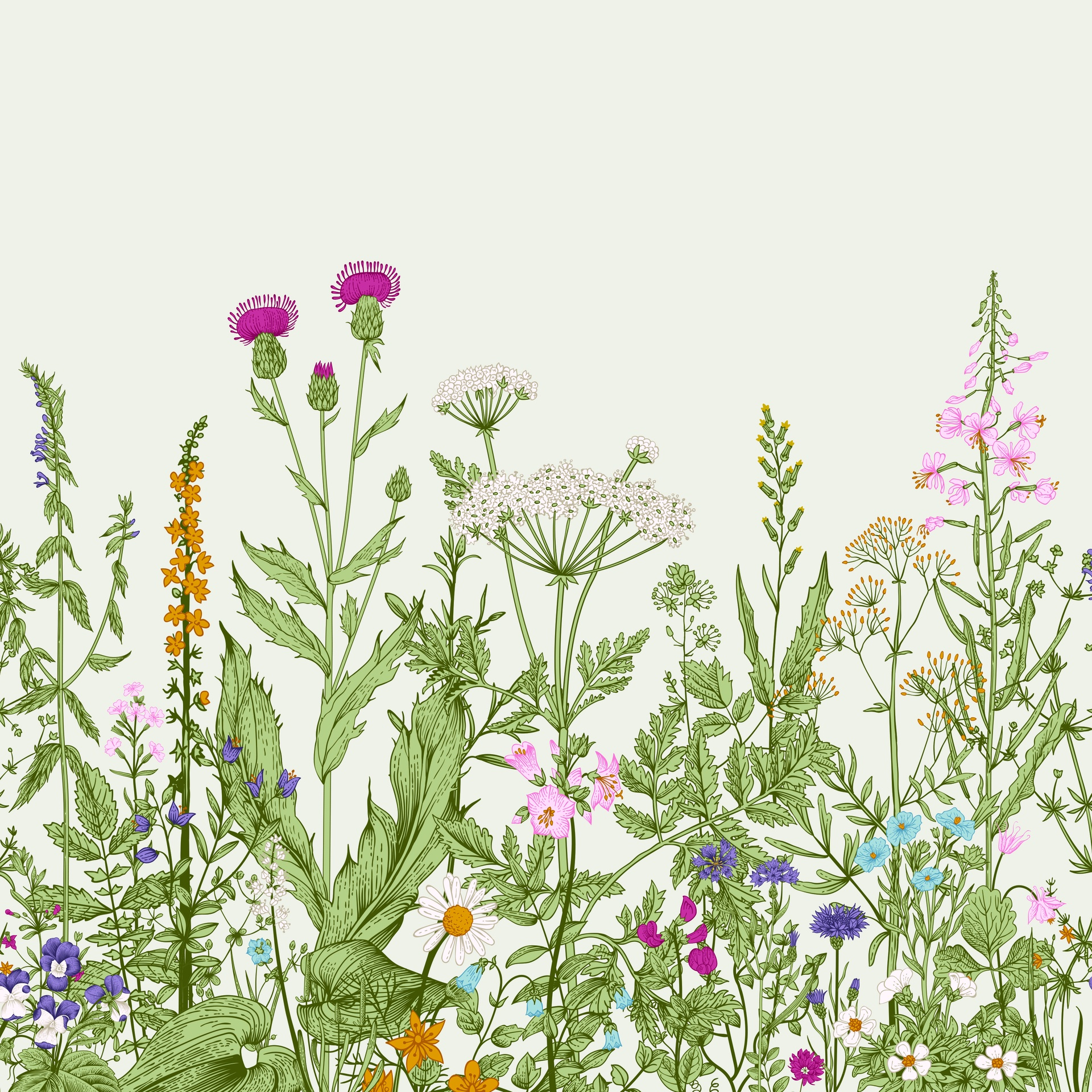 Paper Placemats - Meadow, Double-Sided 348mm x 348mm