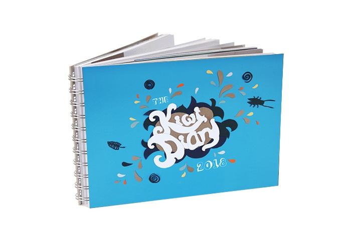 Kiwi Diary 2018