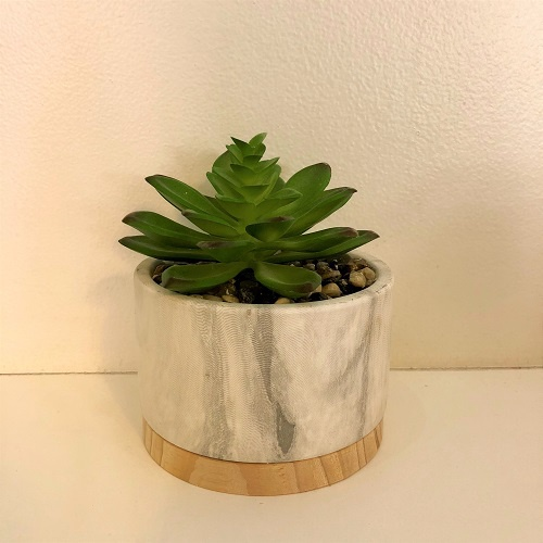 Succulent in Marble Ceramic/Wood Base Pot