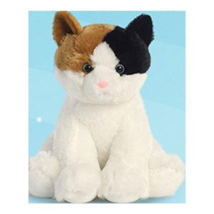 TABBY CAT 15