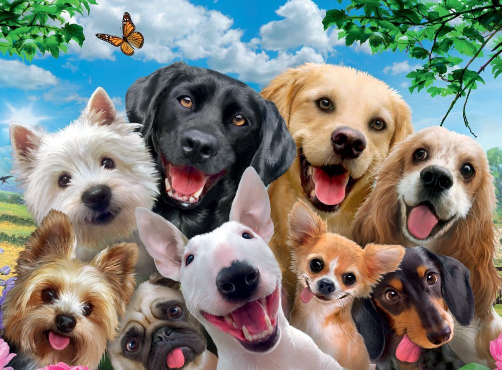 DOGS DLGHTFL PUZZLE 300 PCS