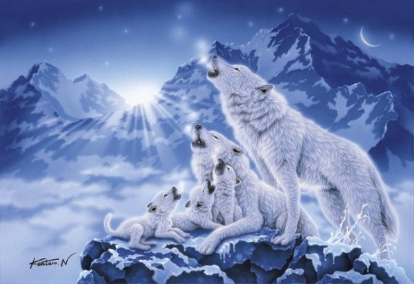 1000 PC PUZZLE FAMILY OF WOLVES