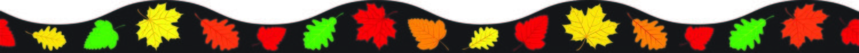 AP 11139 FALL LEAVES MAGNETIC BORDER