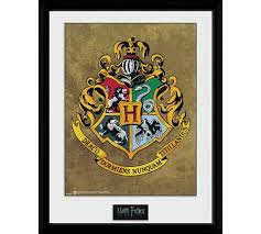 HARRY POTTER HOGWARTS PICTURE