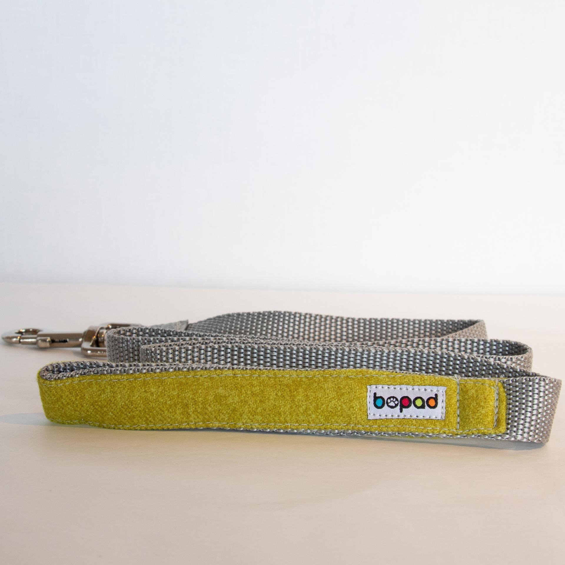 Fabric/Webbing Dog Leads