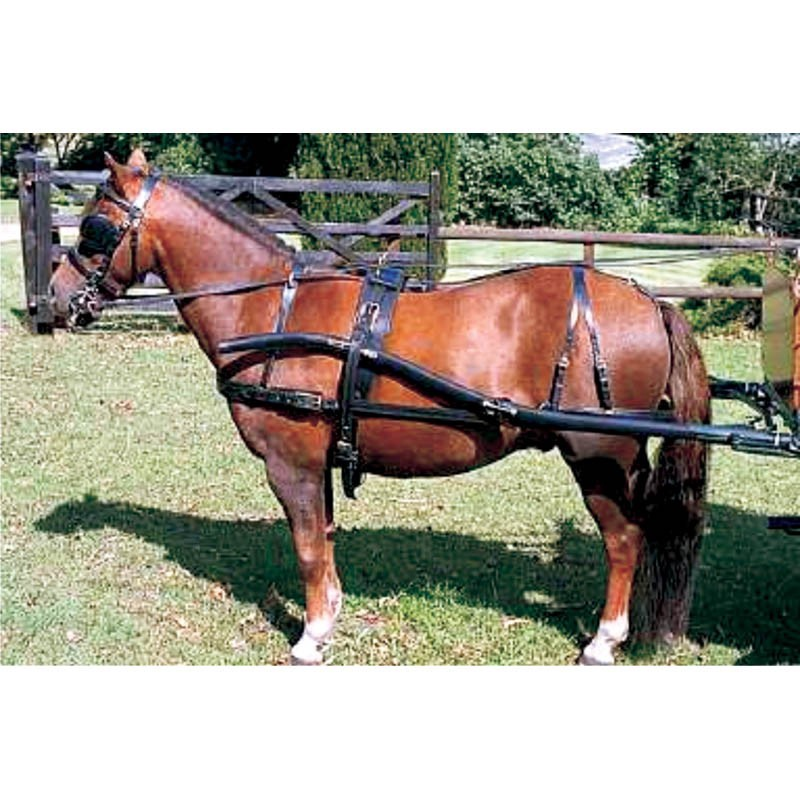 Deluxe Buggy Harness