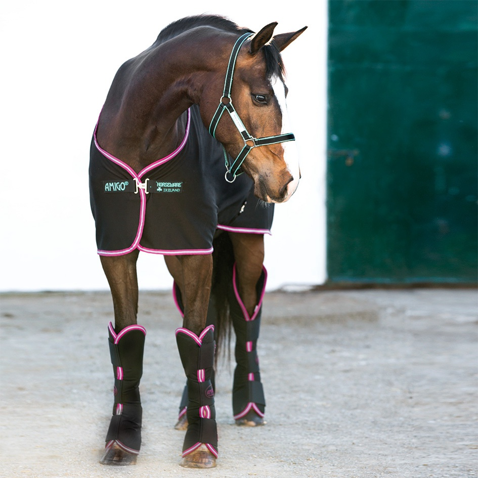 Horseware Amigo Jersey Cooler l Black with Purple & Mint