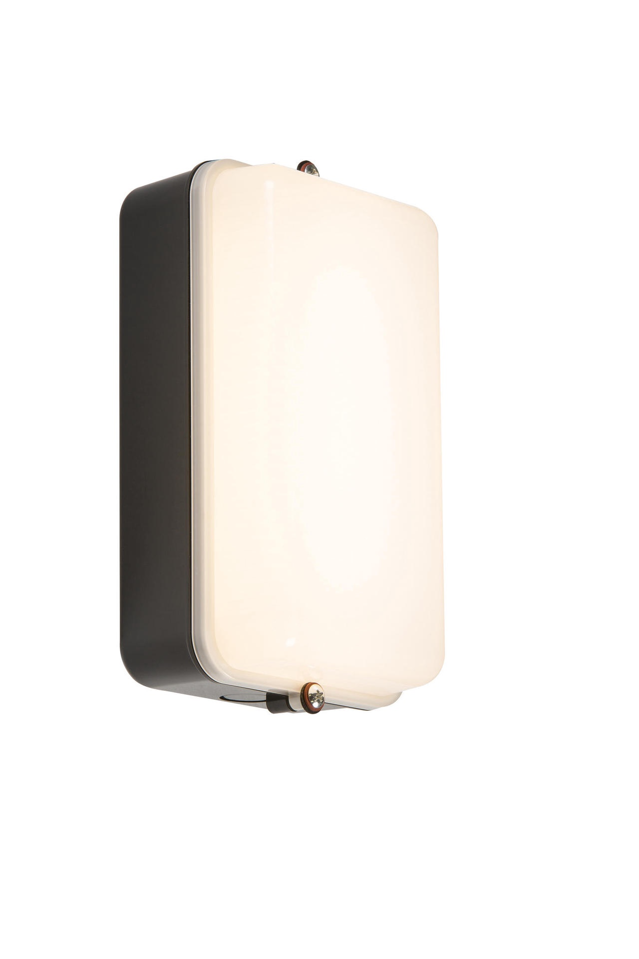 230V IP54 5W LED Security Amenity Bulkhead Black Base with Opal Diffuser Cool White 4000K