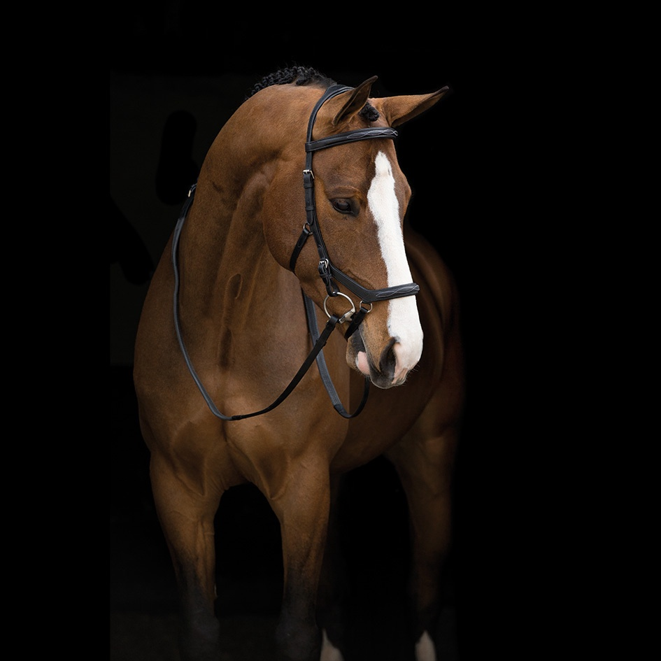 Horseware Rambo Micklem Deluxe Competition Bridle With Reins in English Leather   Brown