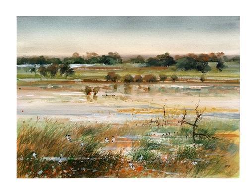 Mandina Marshes