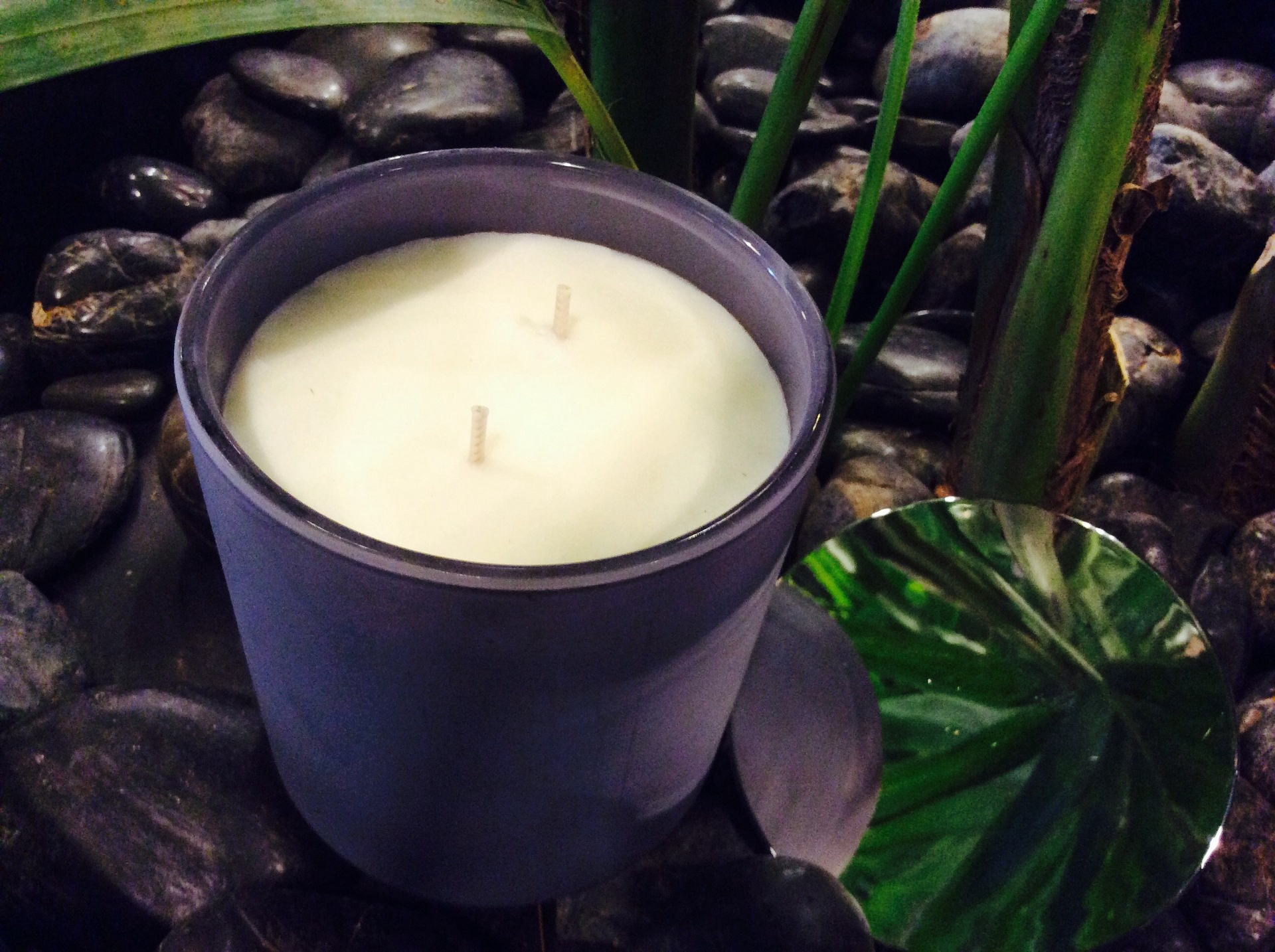 Cherry Blossom Double Wick Soy Candle