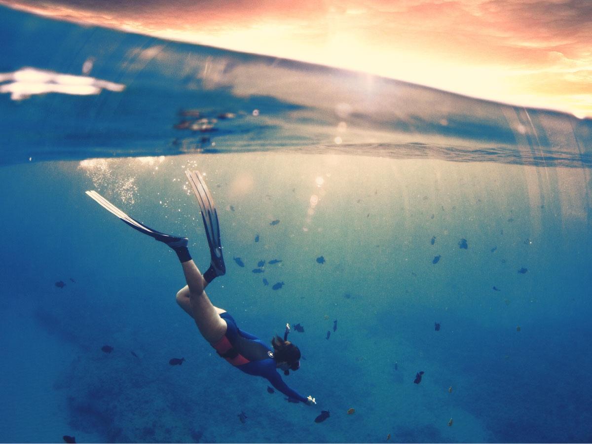 Sunrise Diver