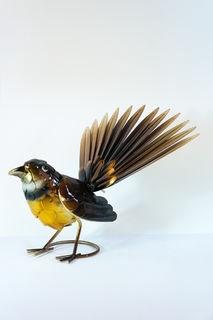 Brown fantail bird