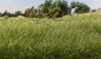 Woodland Scenics #FS617 Static Grass Dark Green 4mm
