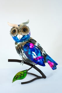 Blue pink owl on branch