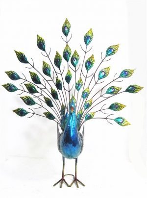 Peacock with large tail freestanding