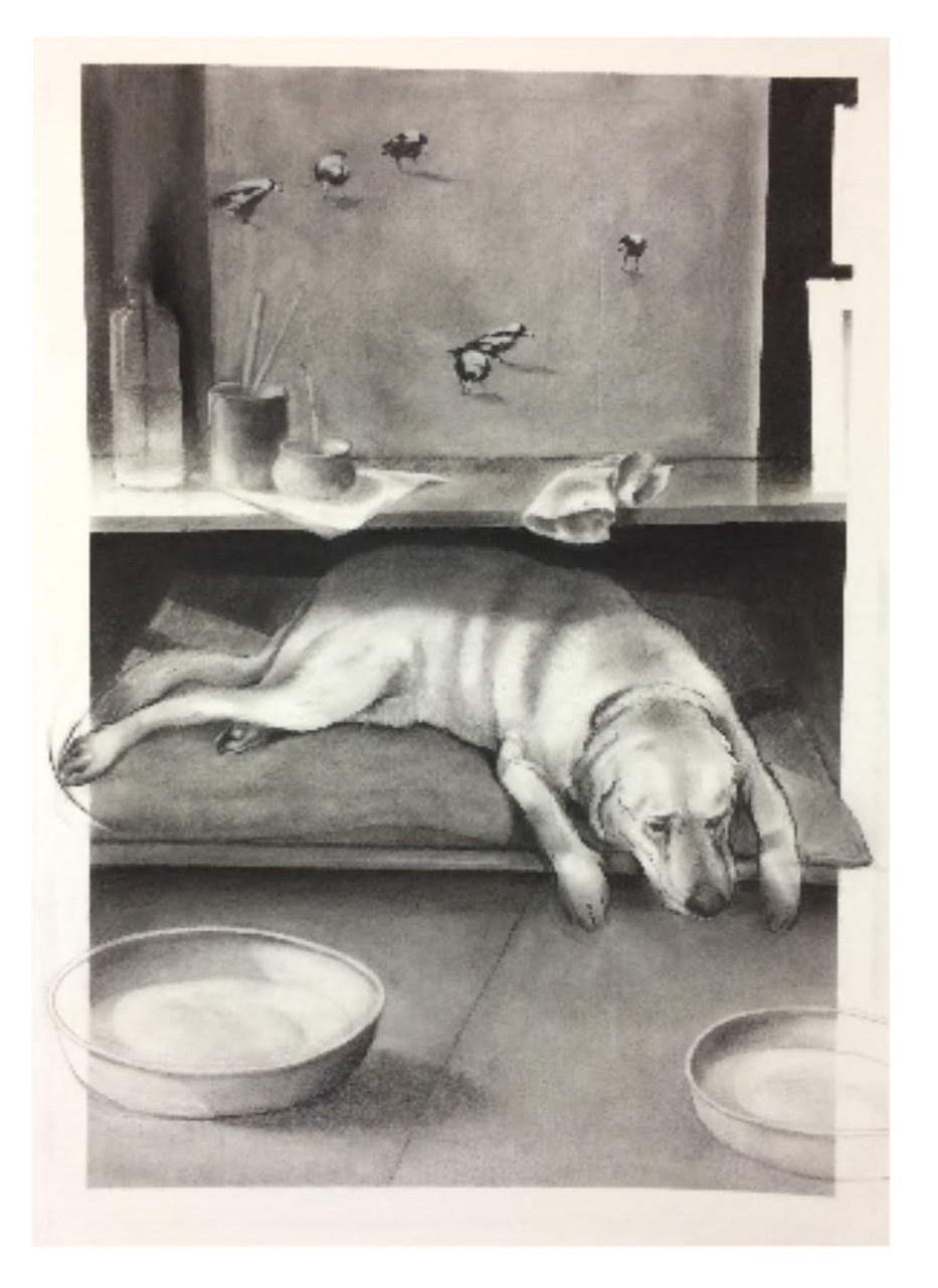STUDIO DOG 2