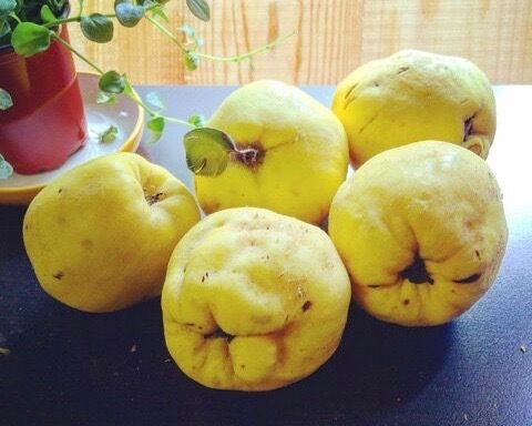 Fresh Quince Jam 原味榅桲果醬