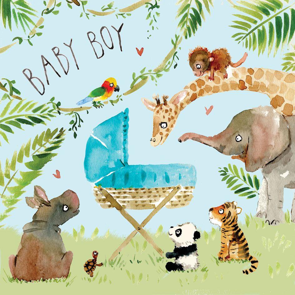New Baby Boy Congratulations Card Jungle Fiz4 New Baby Cards