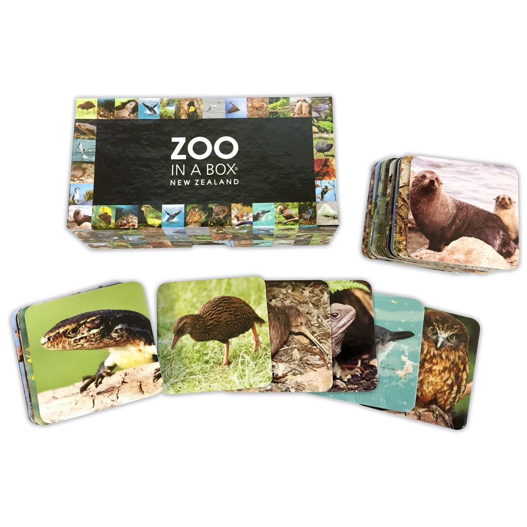 Zoo in a Box