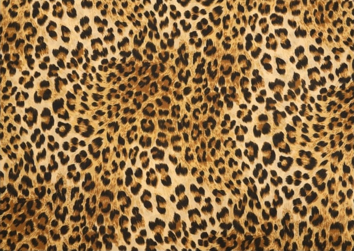 Paper Placemats - Stealth de Afrique –  Rectangle 30pk