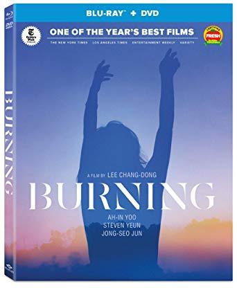 Burning (DVD / blu-ray dual format)
