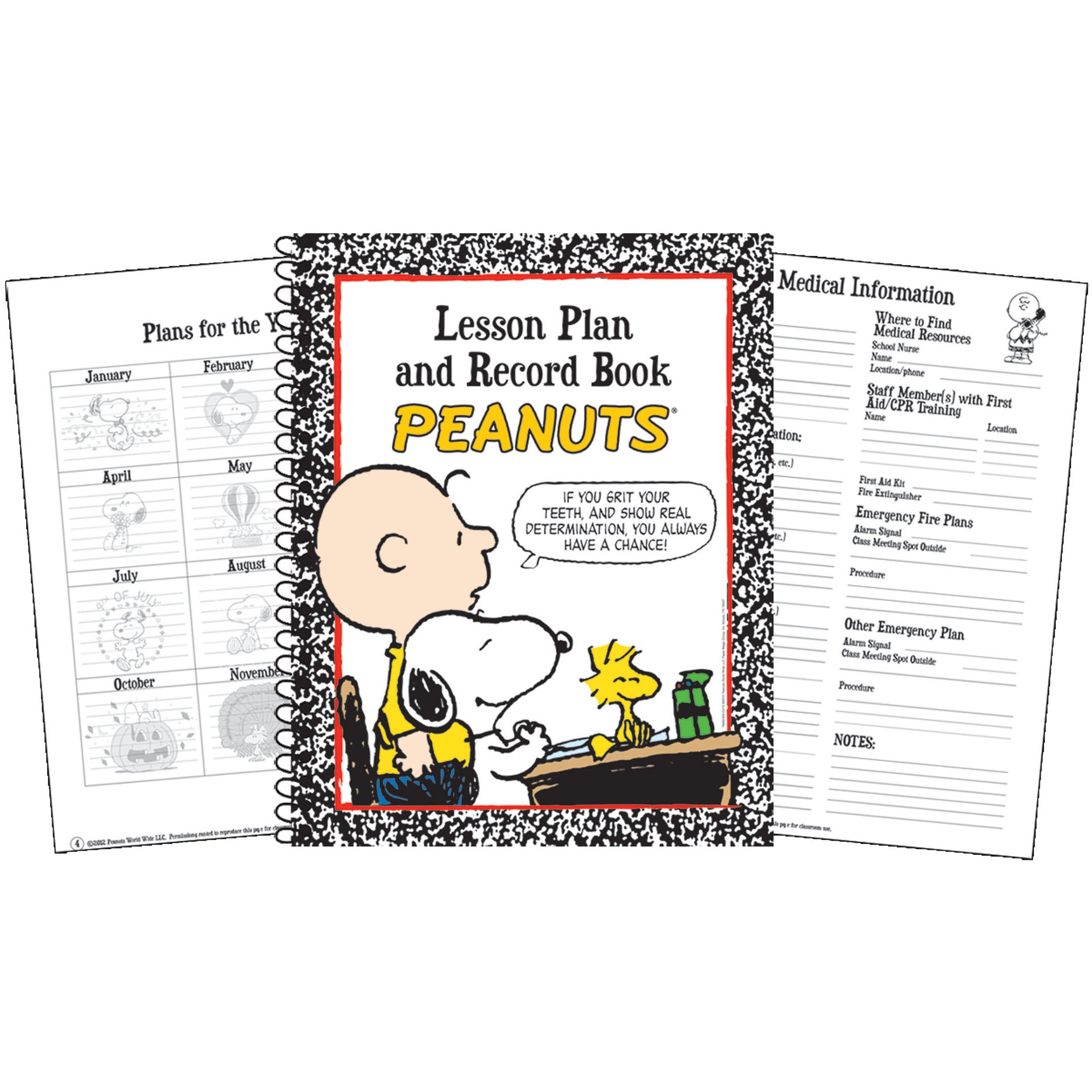 EU 866240 PEANUTS LESSON PLAN/RECORD BOOK