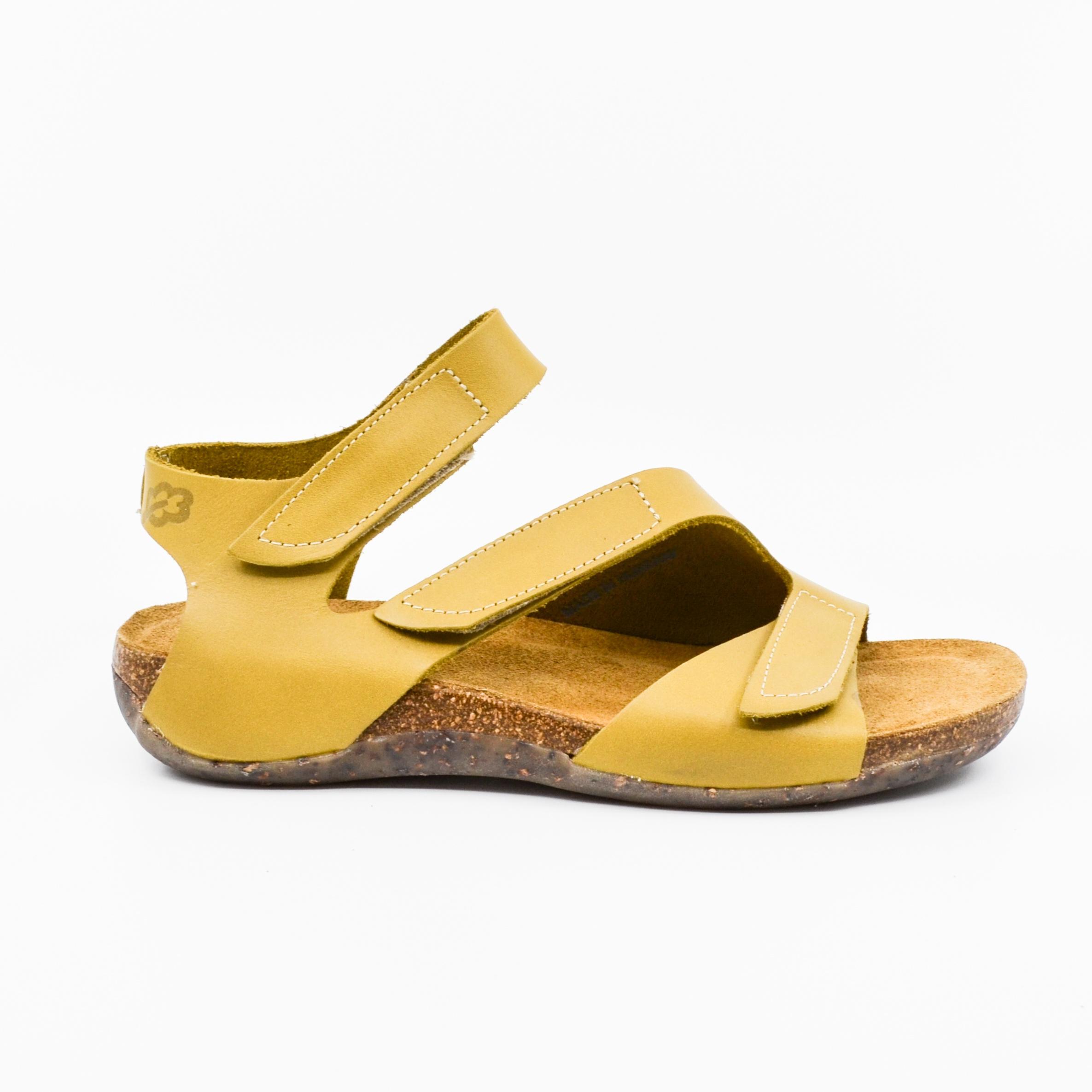 Loints 31662 yellow
