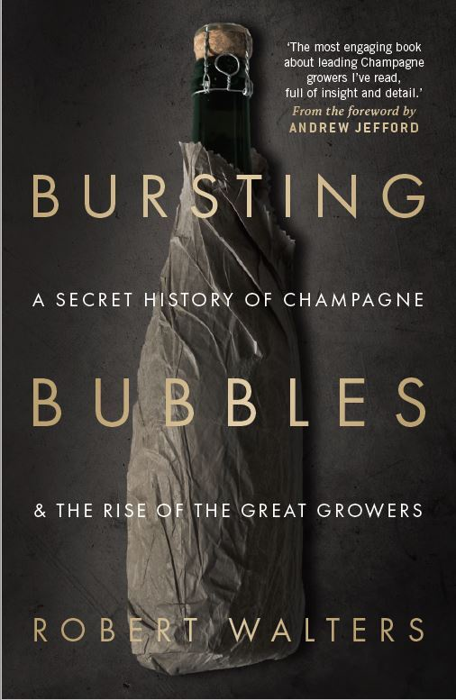 Bursting with bubbles book