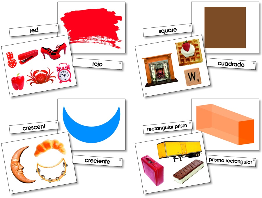 X NS 9091 LANGUAGE CARDS COLORS AND SHAPES