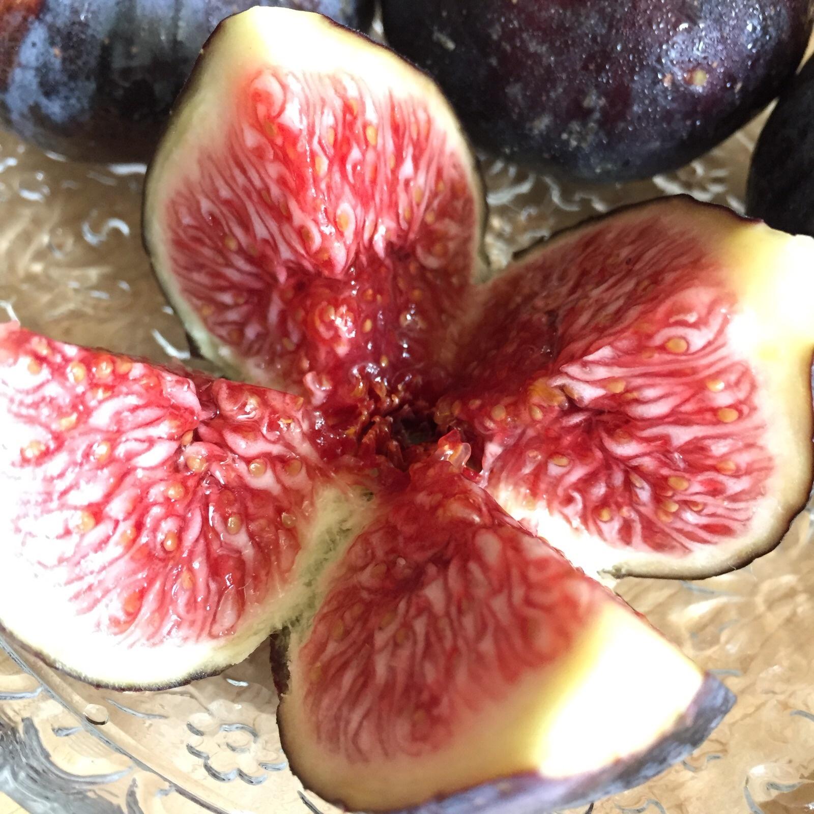 2018-09-05 Spiced Fig Hazelnut Cake 無花果榛子蛋糕