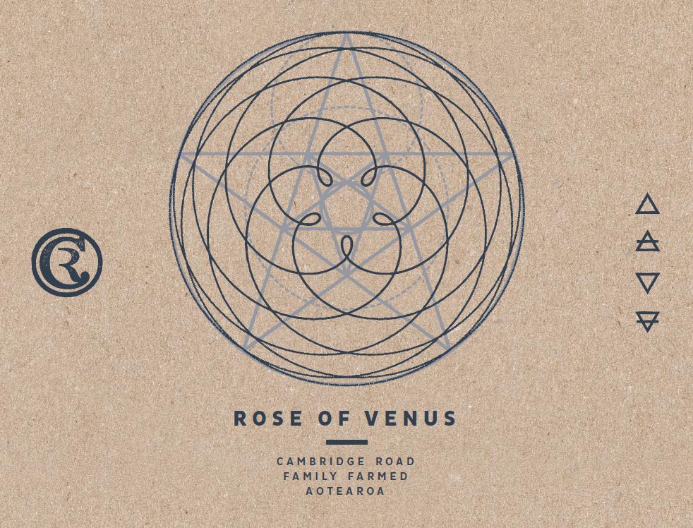 Rose of Venus 2019