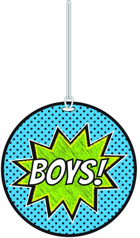 X DC AP 10455 PASS SUPERHERO BOYS