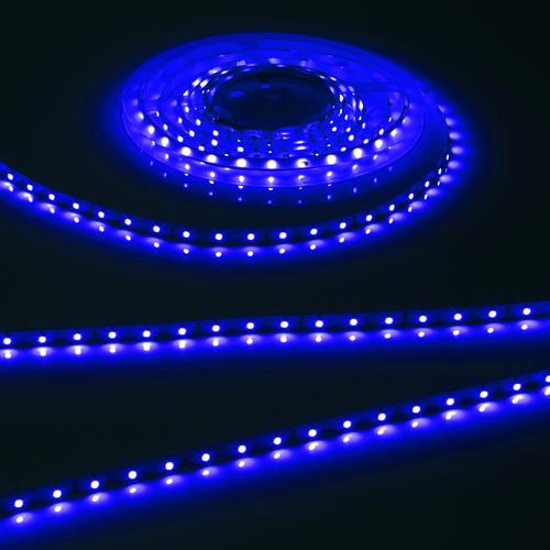 FLEX LED 12V IP20 BLUE (2 METRES)