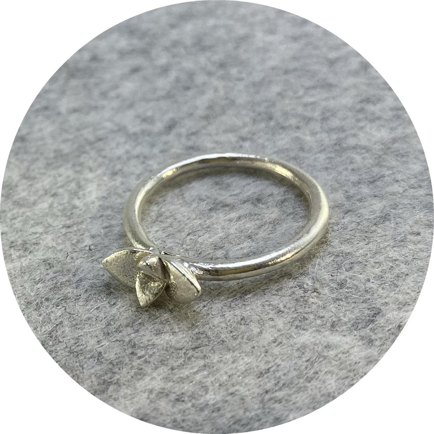 Manuela Igreja- Tiny Crassula ring.